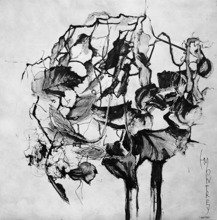 NATURE SCRIPTURES Series: Memory of Ikebana #3, Ink on Tyvek, 79x79cm