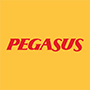 PGSUS