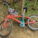 Fusion 2012 - Bikes