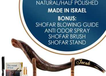 Small Half Polished Shofar name Gold package include spray guide brush Stand list
