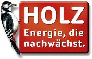 holz energie
