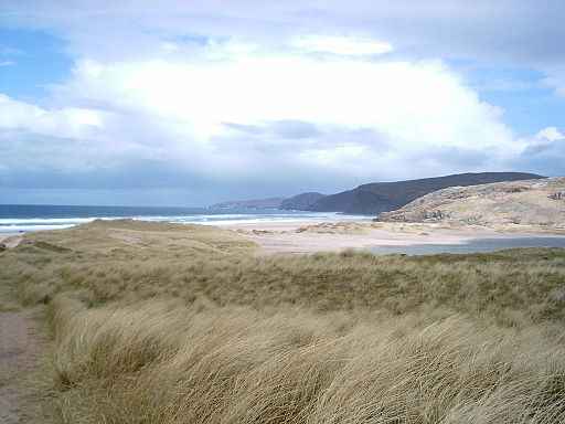 Sandwoodbay