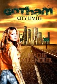 gotham city book