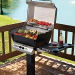Broilmaster portable gas charcoal and specialty grills