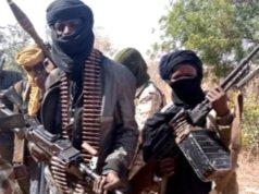Boko Haram terrorists