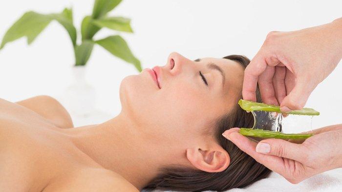 Alasan Menebalkan Rambut Dengan Lidah Buaya Harus Diutamakan Dibanding Obat Kimia