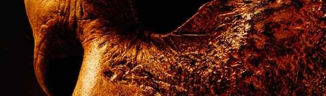 Final 'Halloween Kills' Trailer Returns to Haddonfield