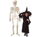 Mr Bones Asda Halloween