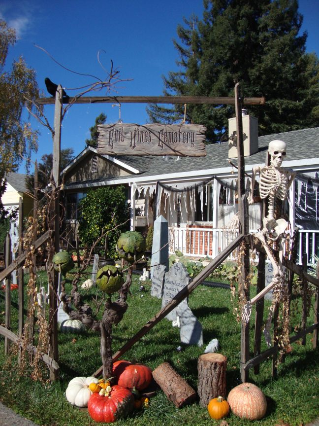 Evil Vines Cemetery Outdoor Yard Haunt Entrance