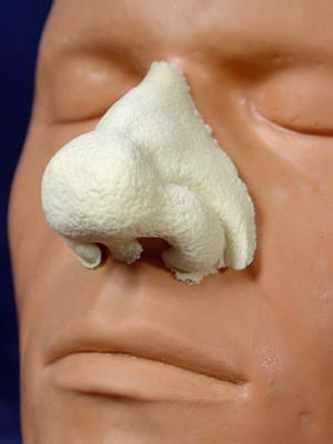 Rubberwear Foam Prosthetic Nose
