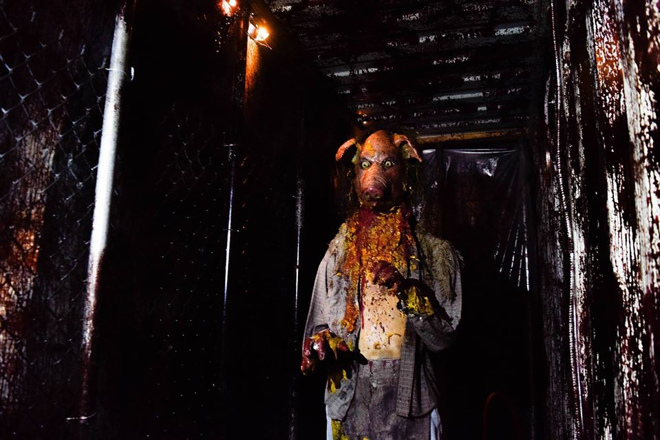 Containment Haunted House Pig Face