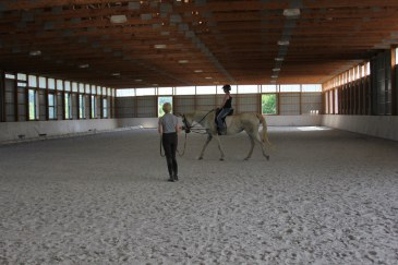 Lunge lesson on the adorable Eap.