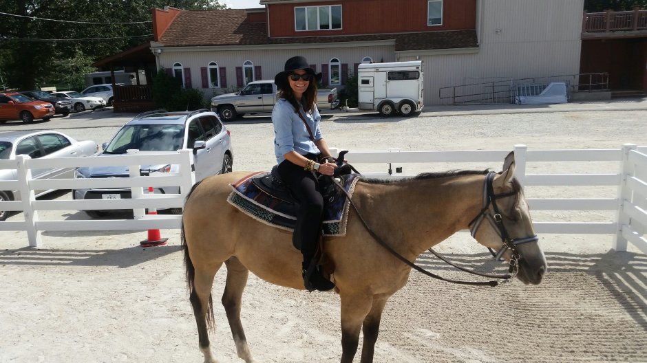 on-my-high-horse