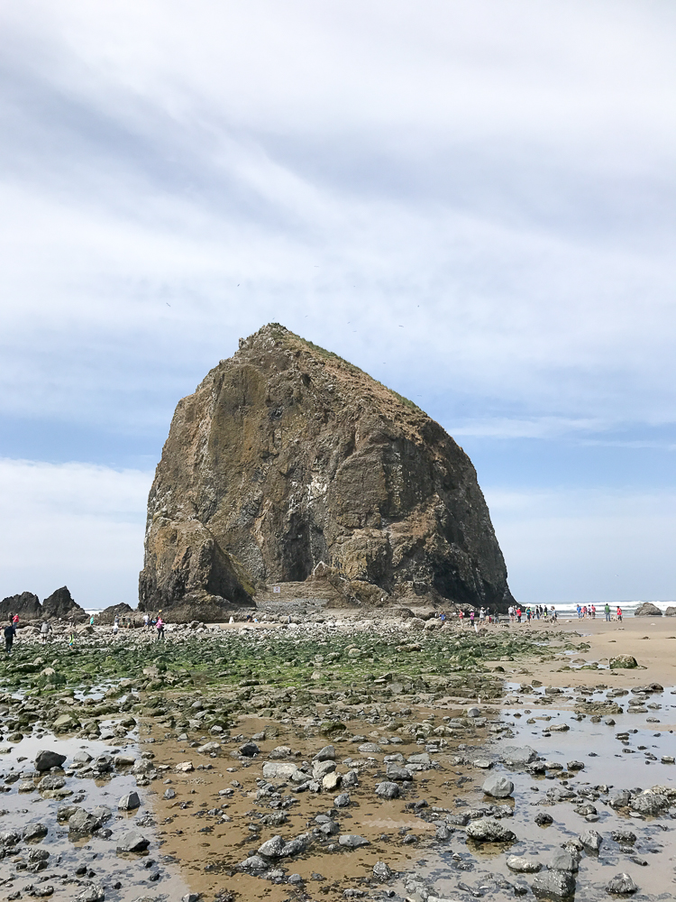 the other side of haystack hill with low tide