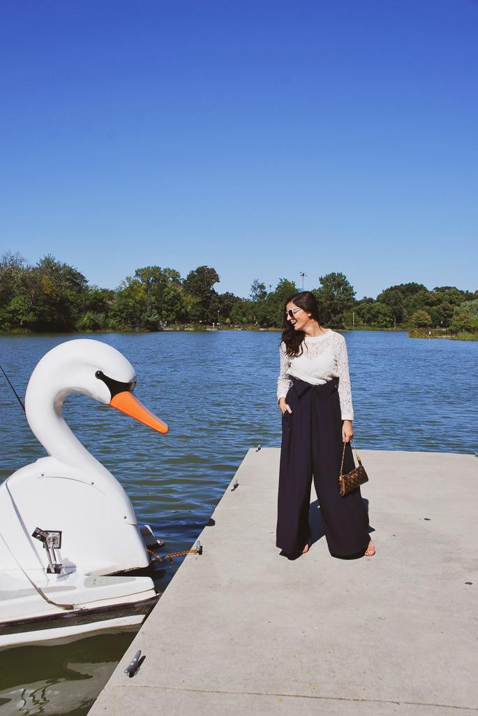 swan lake humboldt park