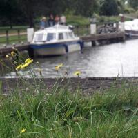 Weeds and waterways