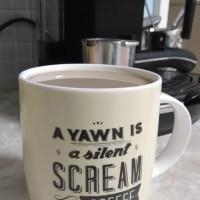 Mugshot: Scream