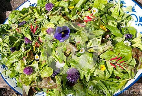 garden-salad-eatable-flowers-summer-50900923