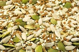 seed-1716__180