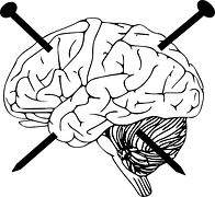 brain-312428__180