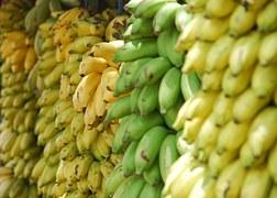 bananas-691856__180