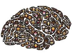 brain-954821__180