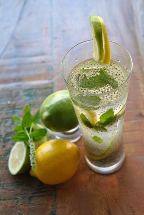 chia-lemonade-2294518_960_720