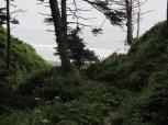 trail down to 4th Beach