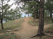 trail to the Point
