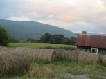 hay and hills