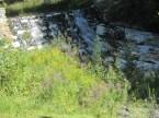 beside the dam