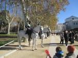 mounted polizia