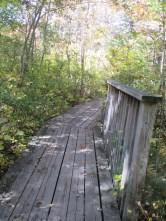 boardwalk with handrail