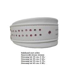 halsband swarovski stenen, strass stenen, showhalsband, tentoonstelling halsband, windhond, wit