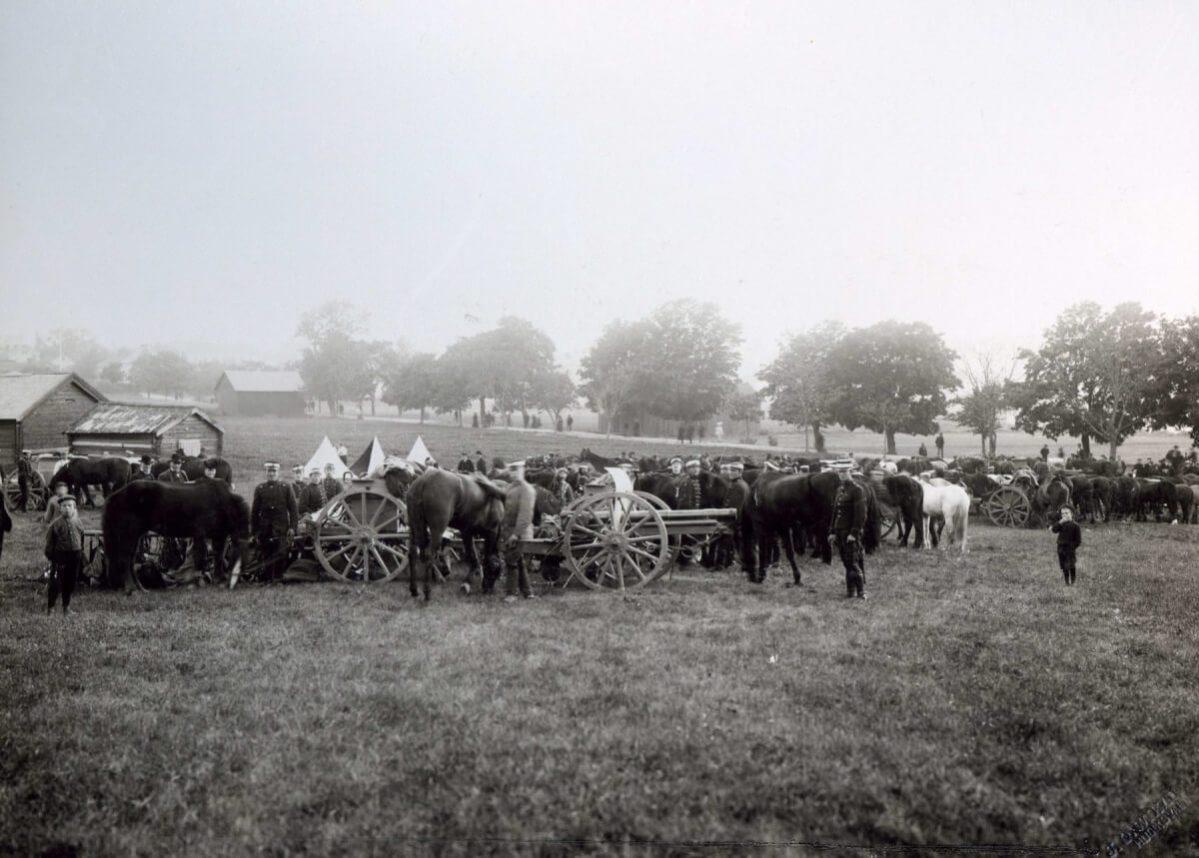 En militärsamling med människor och hästar på åkermark.