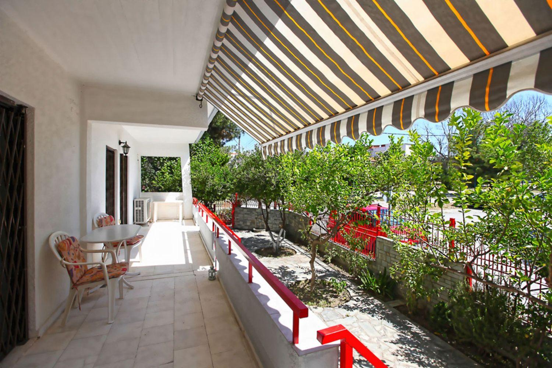 August terrace & yard