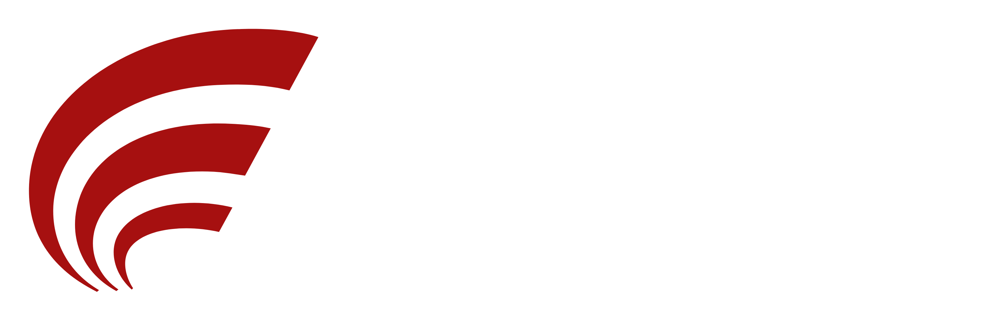Halyard Financial