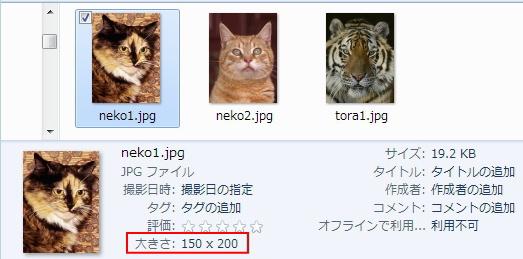 150X200のneko1