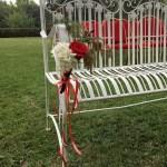 Cérémonie Laïque Hamadryades officiant mariage