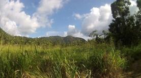 BelizeHom14