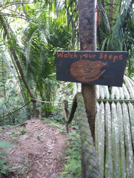 BelizeGVP48