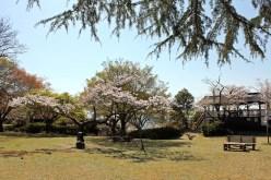 鳥羽山公園(浜松市天竜区二俣町)