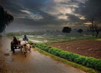 daily life pakistan