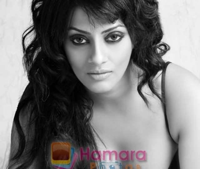 Shikha Puri New Hot Sexy Babe In Bollywood