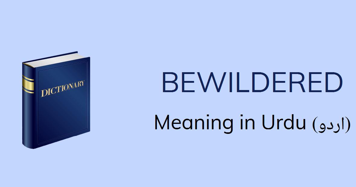 Bewildered Meaning In Urdu - Bewildered Definition English To Urdu