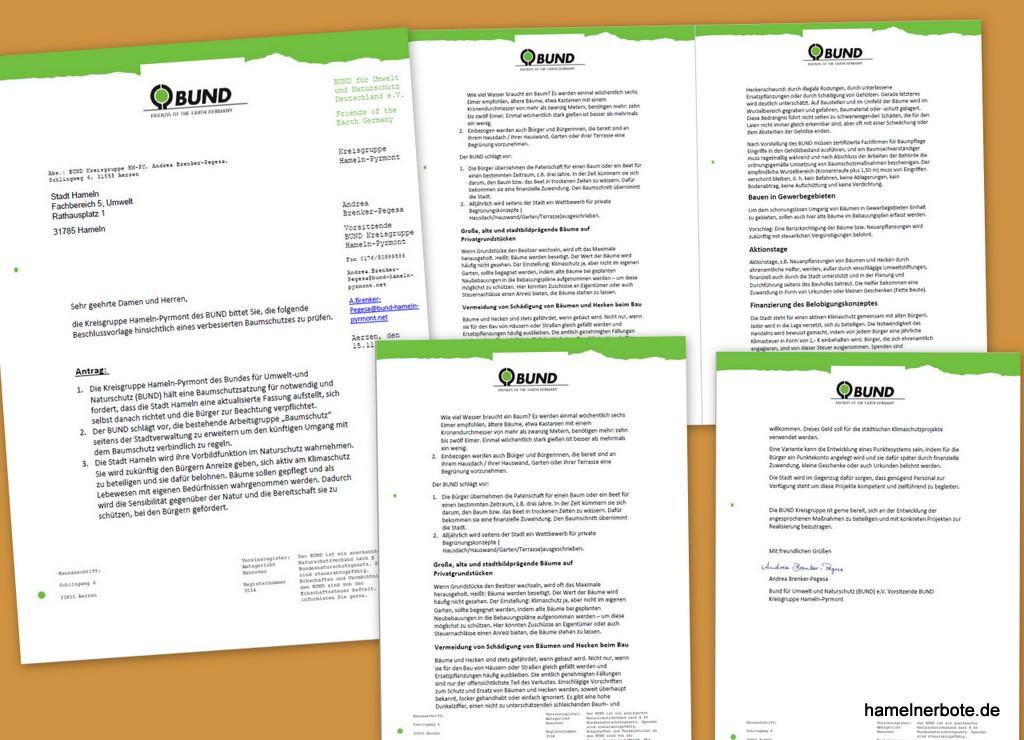 BUND Antrag für einen anderen Baumschutz in Hameln – Infos und Reaktionen (Sammlung)