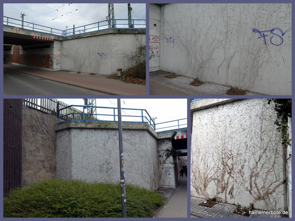 Wandbepflanzung beseitig