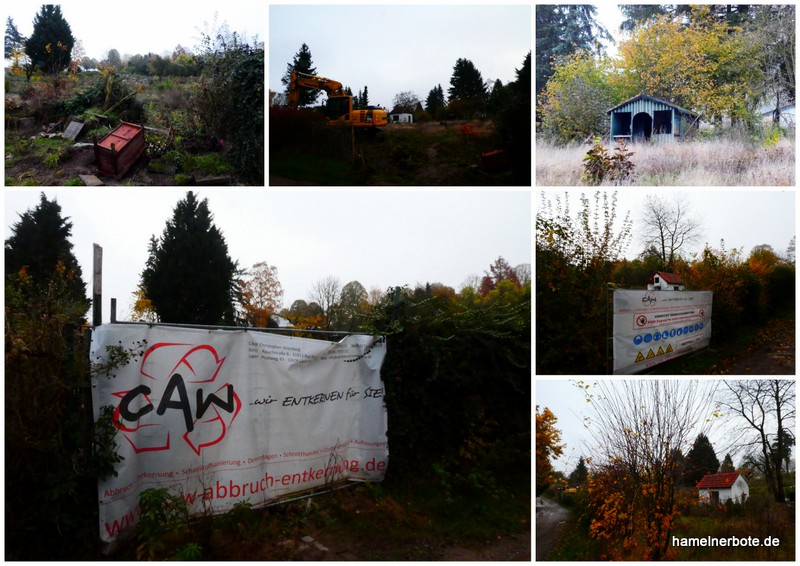 Baugebiet Riesackweg II / Vogelbeerweg – Kleingärten