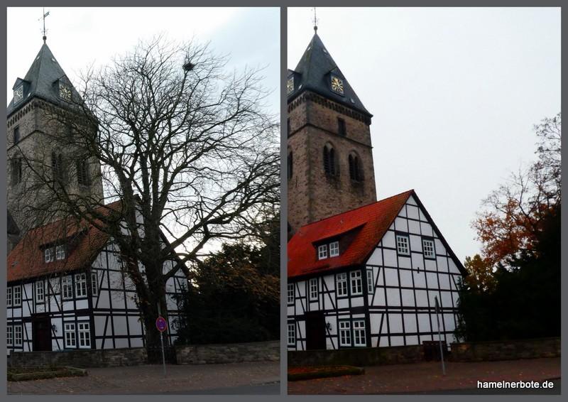 Baumfällung am Münster Hameln