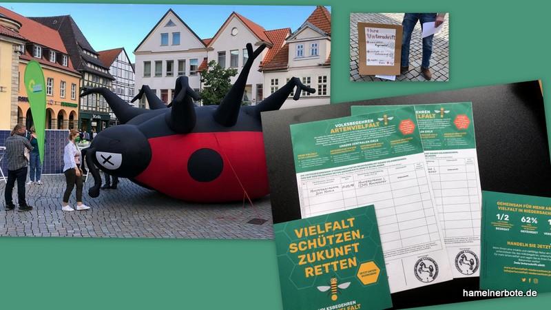 Kurzbericht: Infostand Volksbegehren Artenvielfalt auf dem Pferdemarkt in Hameln am 11.7.2020.
